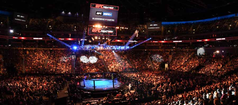 UFC Betting Odds | MMA Lines with InstaBet: Mexican Sportsbook