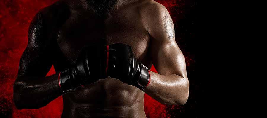 MMA | UFC