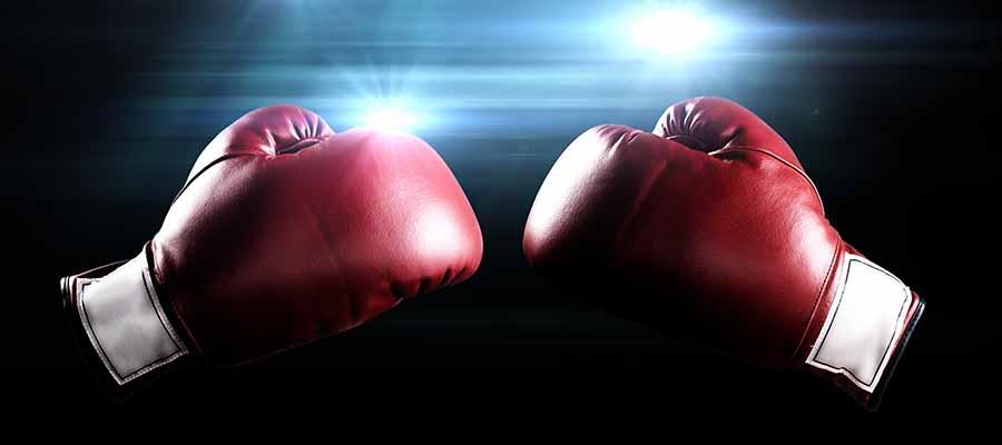 Mthalane vs Edwards