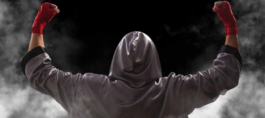 Análisis UFC Fight Night: Rozenstruik vs Sakai