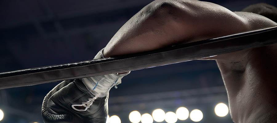 Boxeo Tszyu vs Spark