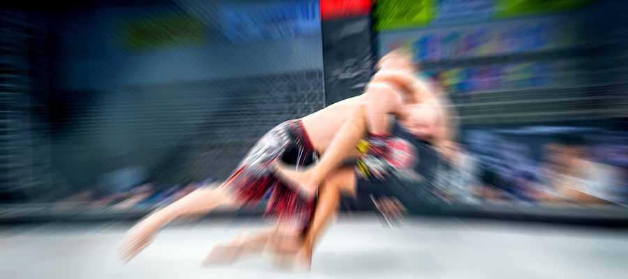 Poirier vs McGregor III